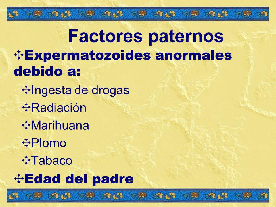 Factores paternos Expermatozoides anormales debido a: Ingesta de drogas Radiación Marihuana Plomo Tabaco Edad del padre