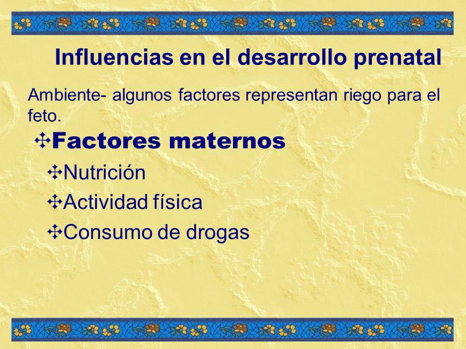 Influencias en el desarrollo prenatal Ambiente- algunos factores representan riego para el feto.