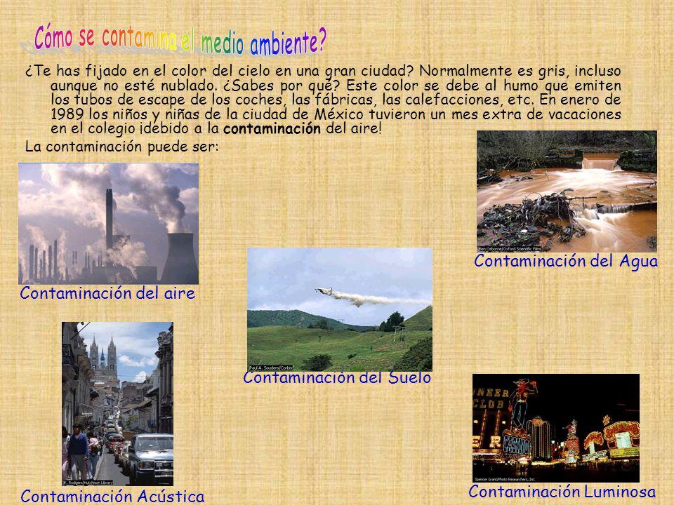 A veces, los procesos de la naturaleza, como la erupción de un volcán, un terremoto o una inundación, dañan el suelo y la vegetación de una comarca.