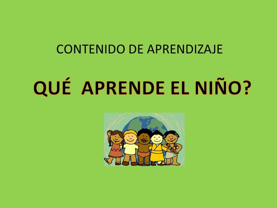 ESTRUCTURA DEL ÁREA LINEAMIENTOS ESTANDARES