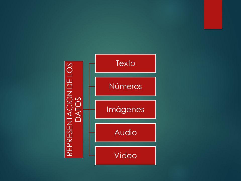 REPRESENTACION DE LOS DATOS Texto Números Imágenes Audio Video