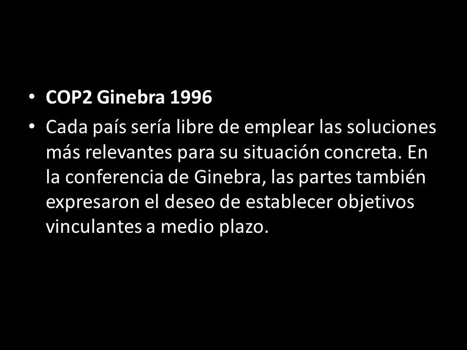 COP2 Ginebra 1996 Cada país sería libre de emplear las soluciones más relevantes para su situación concreta.