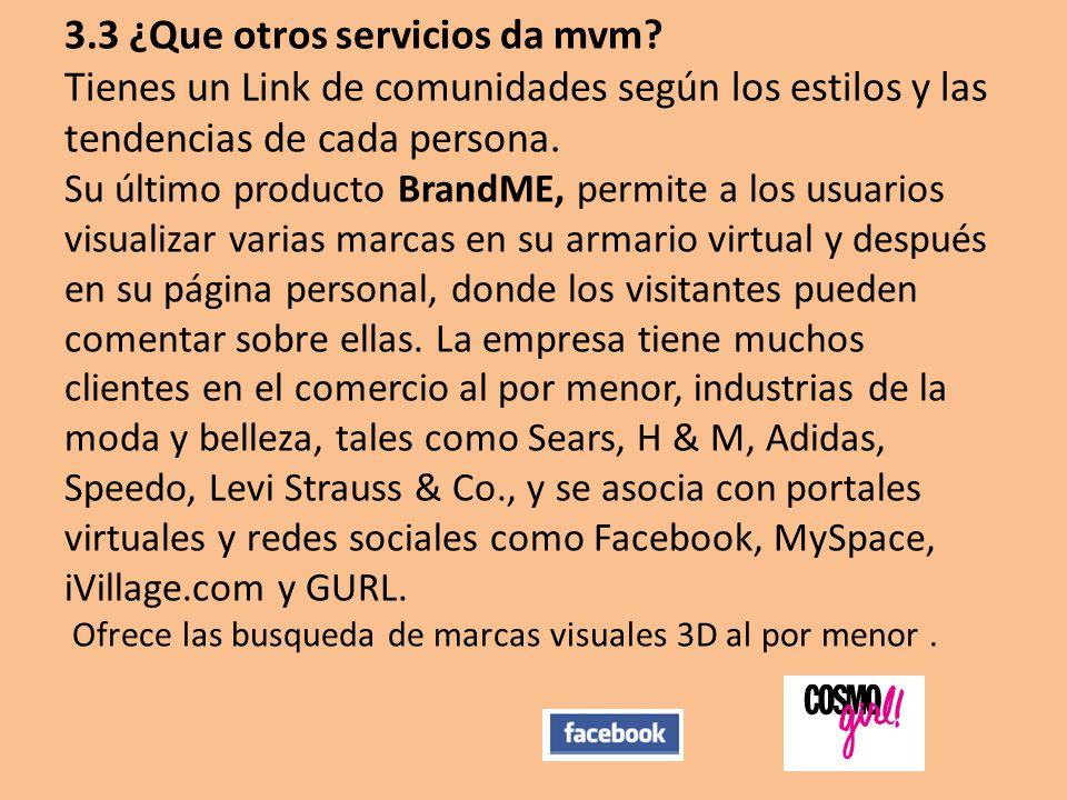 3.3 ¿Que otros servicios da mvm.