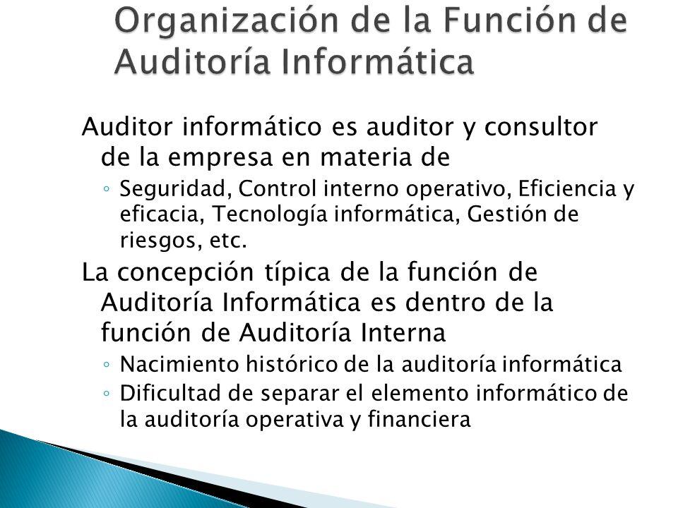 Auditor informático es auditor y consultor de la empresa en materia de Seguridad, Control interno operativo, Eficiencia y eficacia, Tecnología informá