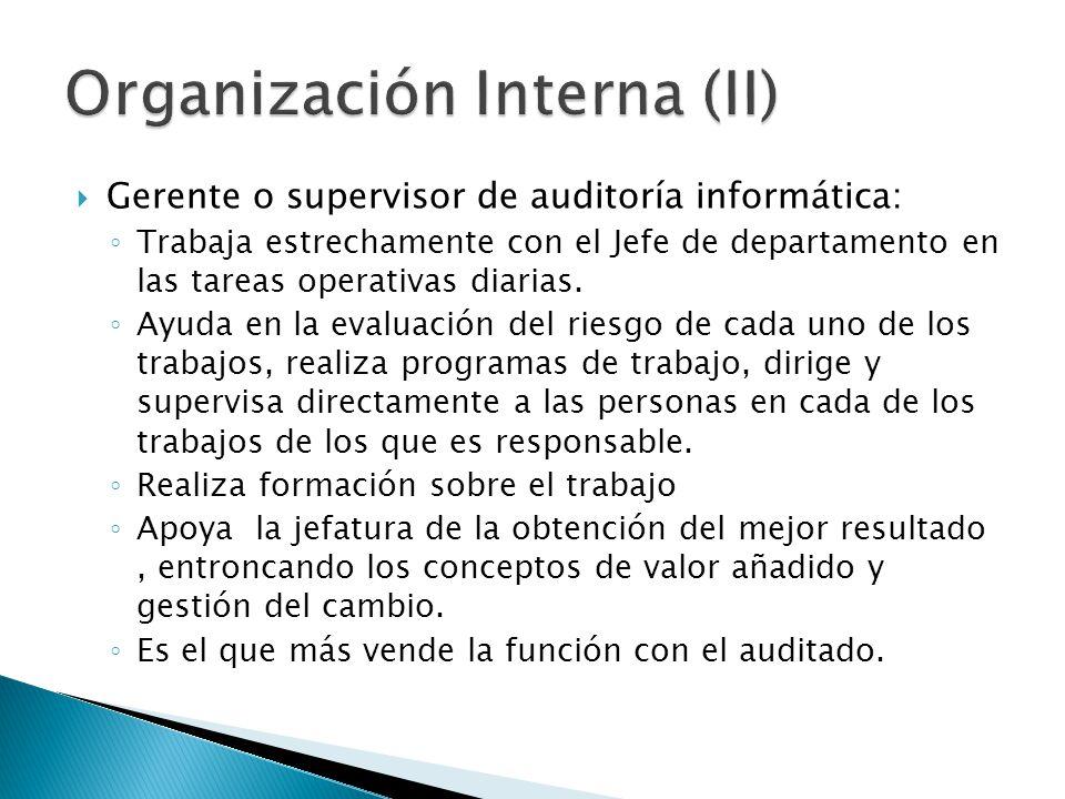 Gerente o supervisor de auditoría informática: Trabaja estrechamente con el Jefe de departamento en las tareas operativas diarias. Ayuda en la evaluac