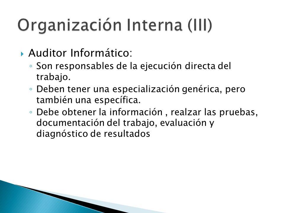 Auditor Informático: Son responsables de la ejecución directa del trabajo. Deben tener una especialización genérica, pero también una específica. Debe