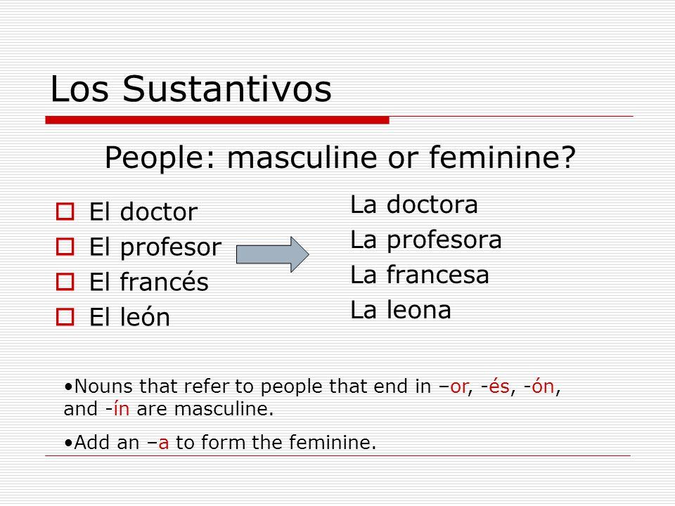 Los Sustantivos El doctor El profesor El francés El león La doctora La profesora La francesa La leona People: masculine or feminine.