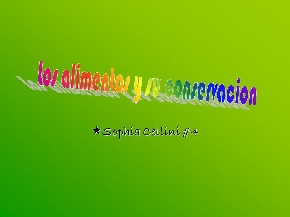 Sophia Cellini #4