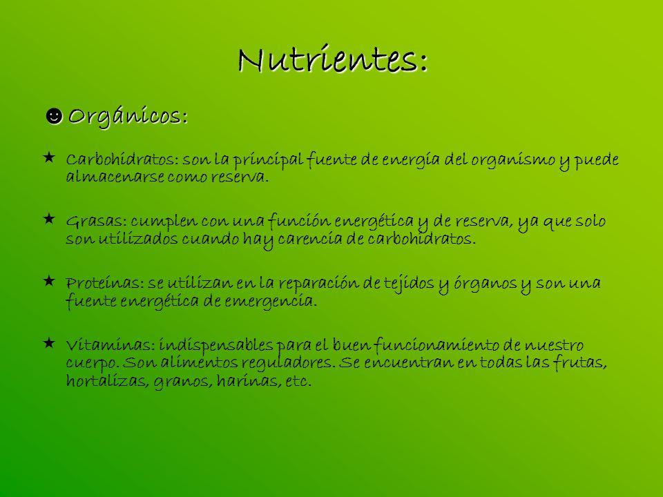 Nutrientes: Orgánicos: Orgánicos: Carbohidratos: son la principal fuente de energía del organismo y puede almacenarse como reserva. Grasas: cumplen co
