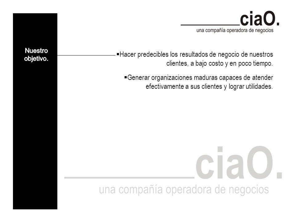 Colaboramos en el diseño, la implantación, la operación y/o la planeación estratégica de las operaciones de nuestros clientes.