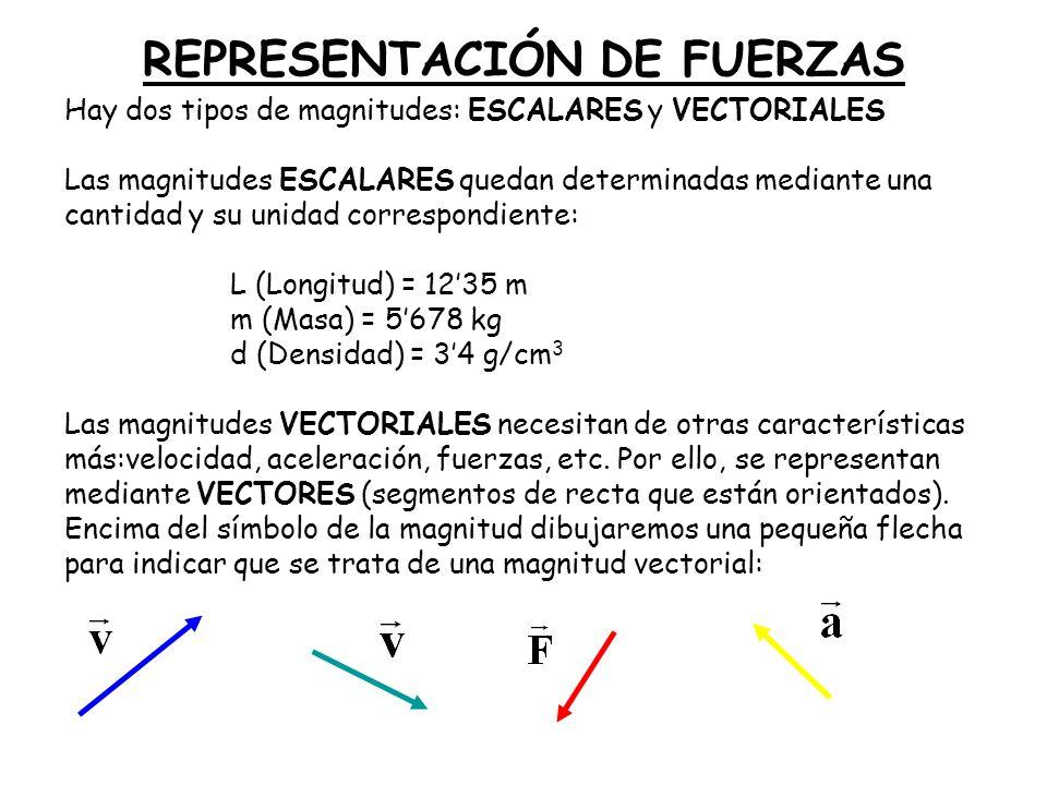 REPRESENTACIÓN DE FUERZAS Hay dos tipos de magnitudes: ESCALARES y VECTORIALES Las magnitudes ESCALARES quedan determinadas mediante una cantidad y su unidad correspondiente: L (Longitud) = 1235 m m (Masa) = 5678 kg d (Densidad) = 34 g/cm 3 Las magnitudes VECTORIALES necesitan de otras características más:velocidad, aceleración, fuerzas, etc.