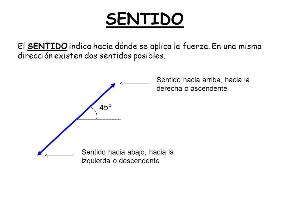 SENTIDO El SENTIDO indica hacia dónde se aplica la fuerza. En una misma dirección existen dos sentidos posibles. 45º Sentido hacia arriba, hacia la de