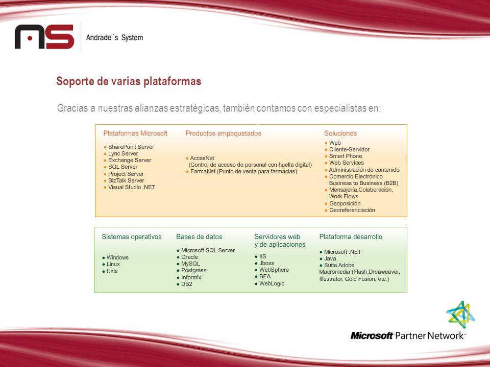 Gracias a nuestras alianzas estratégicas, también contamos con especialistas en: Soporte de varias plataformas