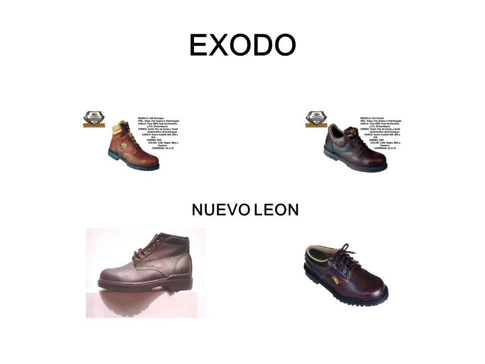 EXODO NUEVO LEON