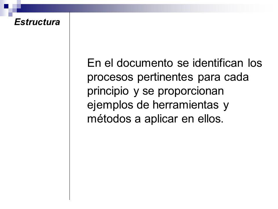 Estructura El documento está diseñado para apoyar a la alta dirección a identificar e incrementar, por medio de la aplicación de los principios de ges