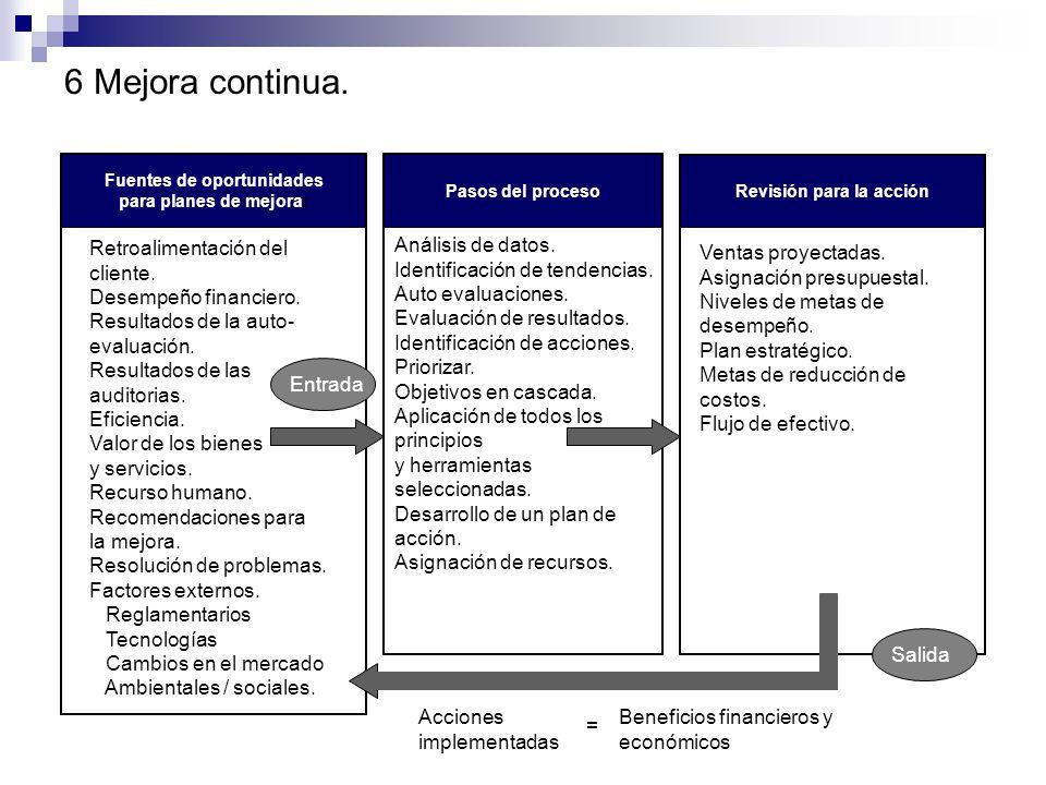 5 Enfoque de sistema. Balance general Diagramas de flujo Acciones preventivas Mapeo de procesos Auto evaluación Modelos de excelencia en los negocios.