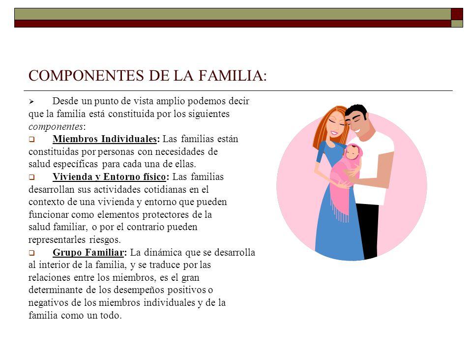 COMPONENTES DE LA FAMILIA: Desde un punto de vista amplio podemos decir que la familia está constituida por los siguientes componentes: Miembros Indiv