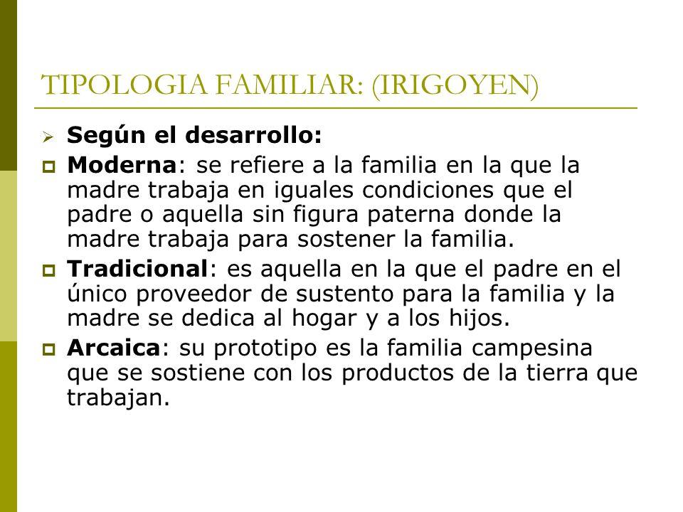 TIPOLOGIA FAMILIAR: (IRIGOYEN) Según el desarrollo: Moderna: se refiere a la familia en la que la madre trabaja en iguales condiciones que el padre o