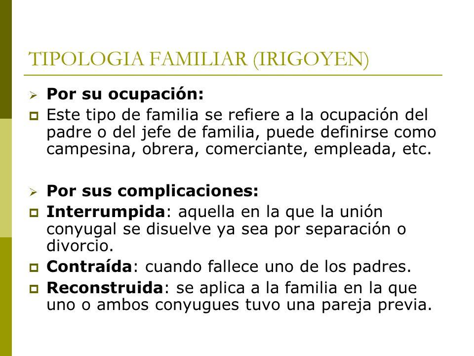 TIPOLOGIA FAMILIAR (IRIGOYEN) Por su ocupación: Este tipo de familia se refiere a la ocupación del padre o del jefe de familia, puede definirse como c