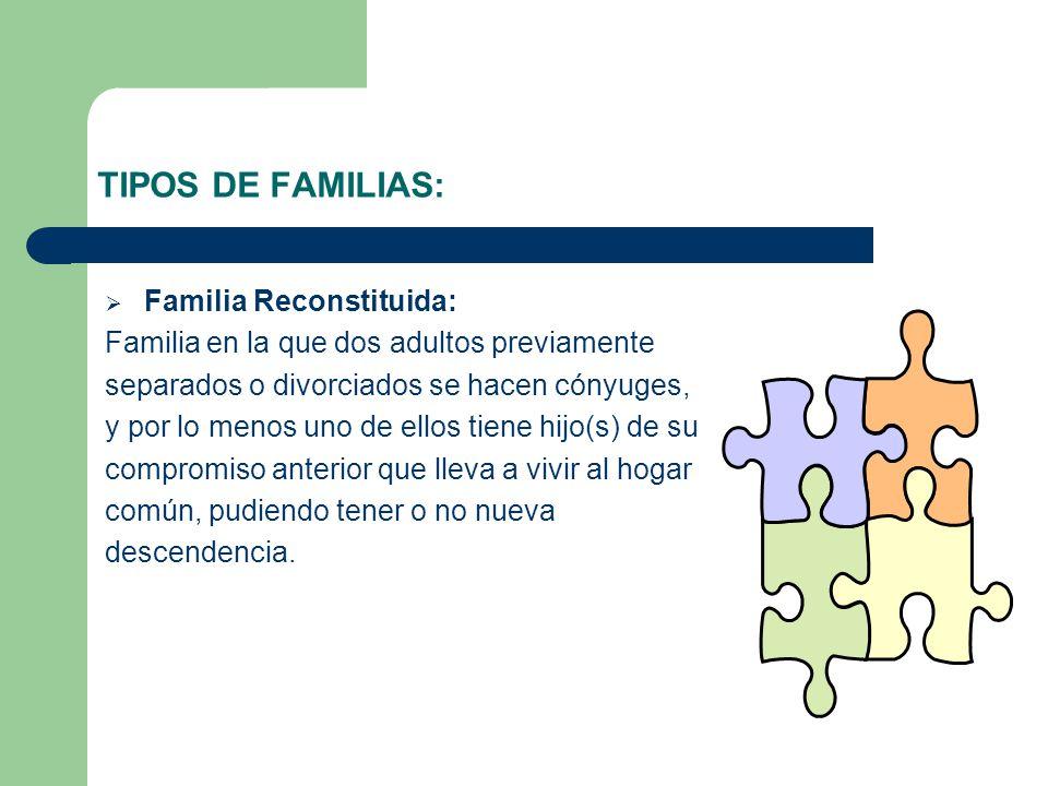 TIPOS DE FAMILIAS: Familia Reconstituida: Familia en la que dos adultos previamente separados o divorciados se hacen cónyuges, y por lo menos uno de e