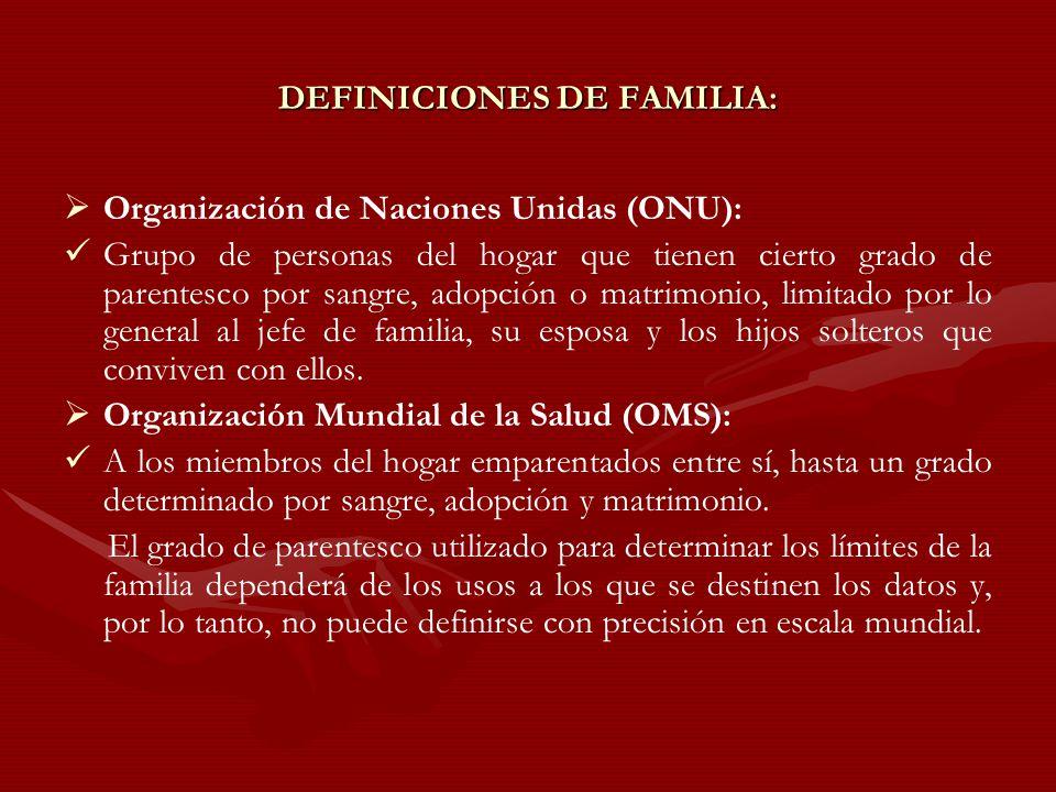 DEFINICIONES DE FAMILIA: Organización de Naciones Unidas (ONU): Grupo de personas del hogar que tienen cierto grado de parentesco por sangre, adopción