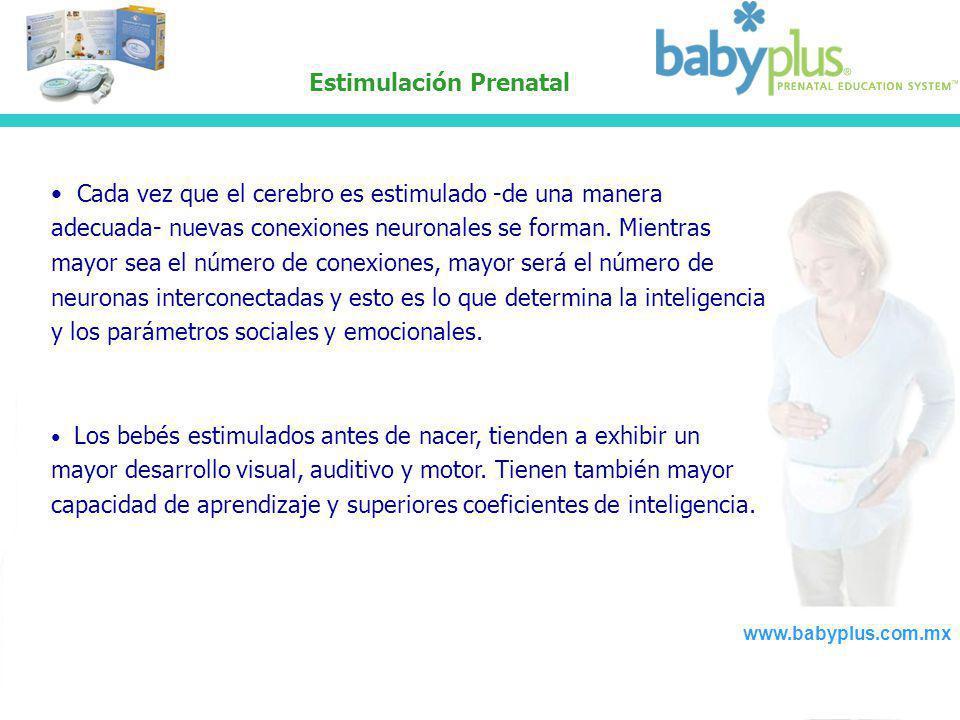 Estimulación Prenatal Cada vez que el cerebro es estimulado -de una manera adecuada- nuevas conexiones neuronales se forman. Mientras mayor sea el núm