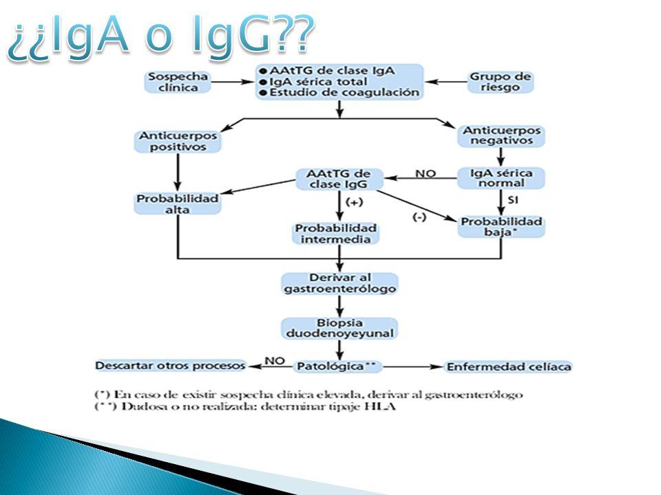 IgAIgG MétodoELISA PrincipioCuantitativo Rango0.11-20 AU/mL0.12-20 AU/mL MuestraSuero Tiempo total 75 minutos Especificidad100 %90.9 % Sensibilidad88.5 %81.0 %