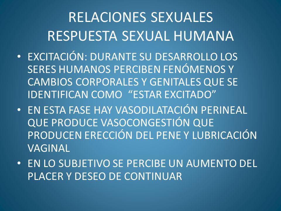 RELACIONES SEXUALES RESPUESTA SEXUAL HUMANA EXCITACIÓN: DURANTE SU DESARROLLO LOS SERES HUMANOS PERCIBEN FENÓMENOS Y CAMBIOS CORPORALES Y GENITALES QU