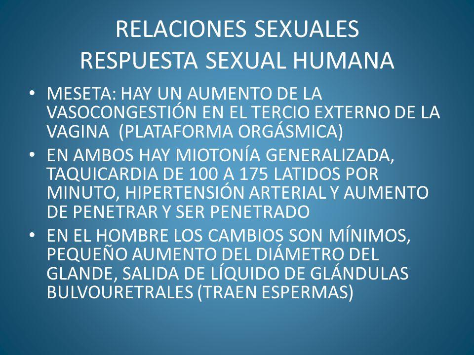 RELACIONES SEXUALES RESPUESTA SEXUAL HUMANA MESETA: HAY UN AUMENTO DE LA VASOCONGESTIÓN EN EL TERCIO EXTERNO DE LA VAGINA (PLATAFORMA ORGÁSMICA) EN AM