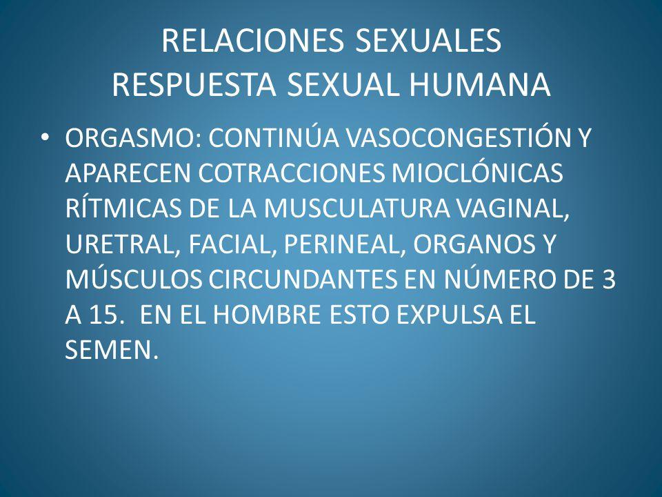 RELACIONES SEXUALES RESPUESTA SEXUAL HUMANA ORGASMO: CONTINÚA VASOCONGESTIÓN Y APARECEN COTRACCIONES MIOCLÓNICAS RÍTMICAS DE LA MUSCULATURA VAGINAL, U