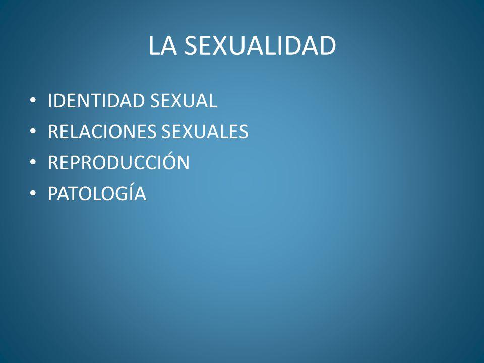 LA SEXUALIDAD IDENTIDAD SEXUAL RELACIONES SEXUALES REPRODUCCIÓN PATOLOGÍA