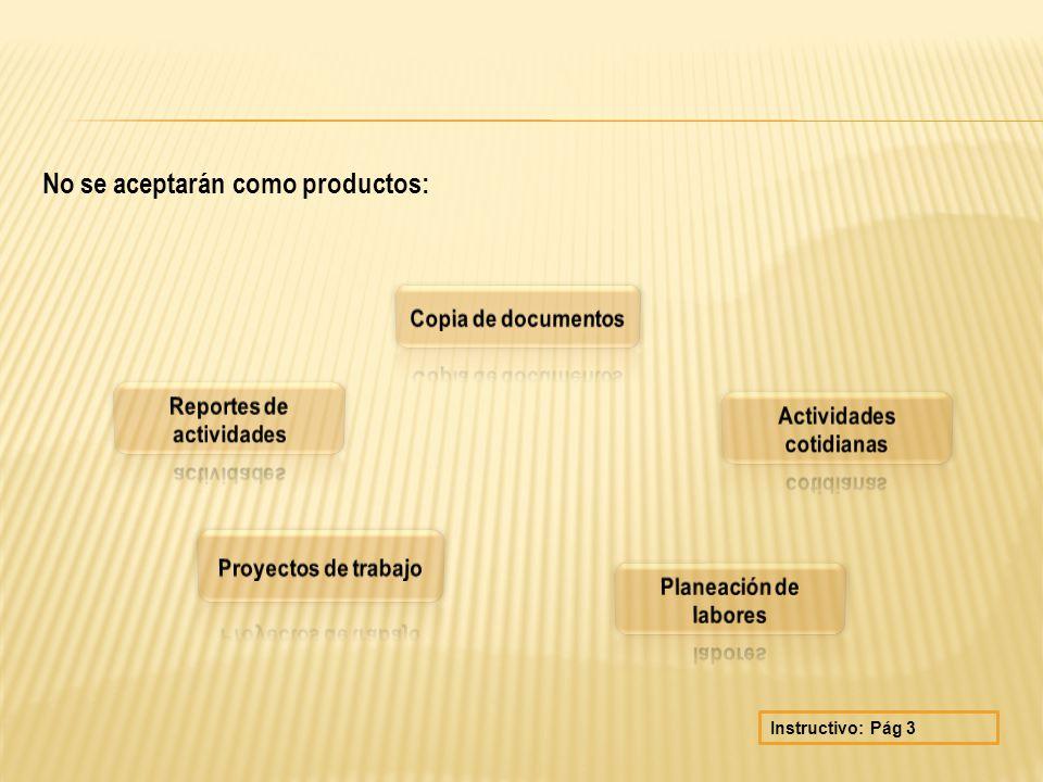 No se aceptarán como productos: Instructivo: Pág 3