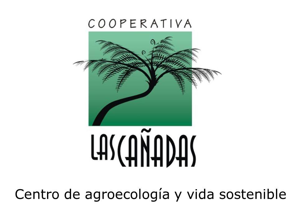 Agroecología Gallinas para huevo