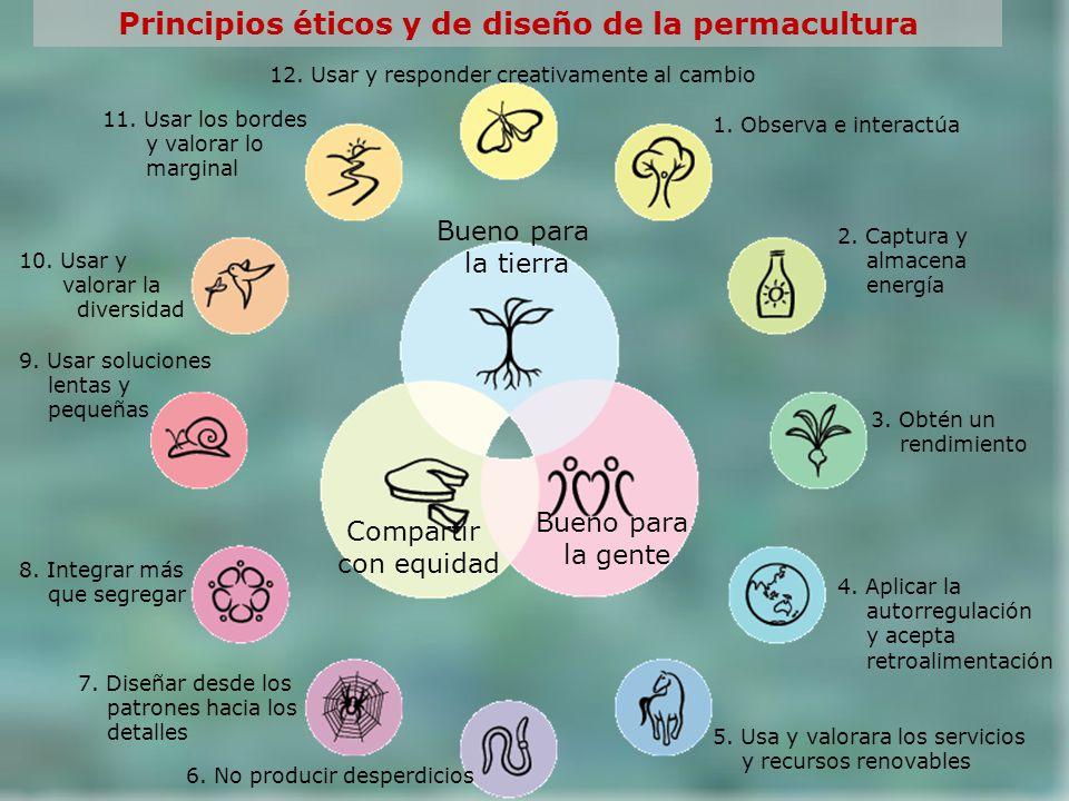 Bueno para la tierra Compartir con equidad Bueno para la gente Principios éticos y de diseño de la permacultura 1. Observa e interactúa 2. Captura y a