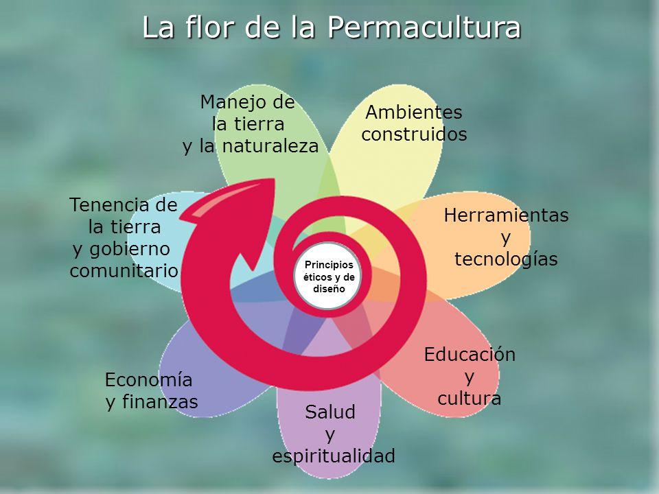 Ambientes construidos Tenencia de la tierra y gobierno comunitario Manejo de la tierra y la naturaleza Herramientas y tecnologías Educación y cultura Salud y espiritualidad Economía y finanzas La flor de la Permacultura Principios éticos y de diseño