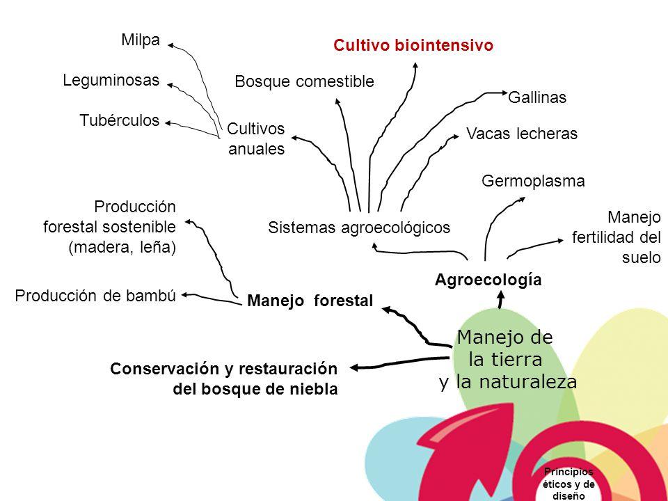 Manejo de la tierra y la naturaleza Agroecología Manejo forestal Conservación y restauración del bosque de niebla Principios éticos y de diseño Produc