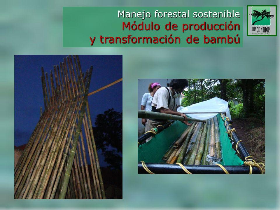 Manejo forestal sostenible Módulo de producción y transformación de bambú