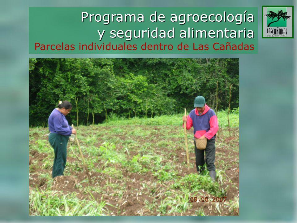 Programa de agroecología y seguridad alimentaria Parcelas individuales dentro de Las Cañadas