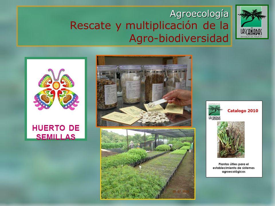 Agroecología Rescate y multiplicación de la Agro-biodiversidad HUERTO DE SEMILLAS