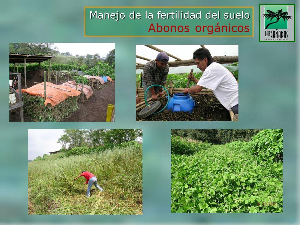Manejo de la fertilidad del suelo Abonos orgánicos