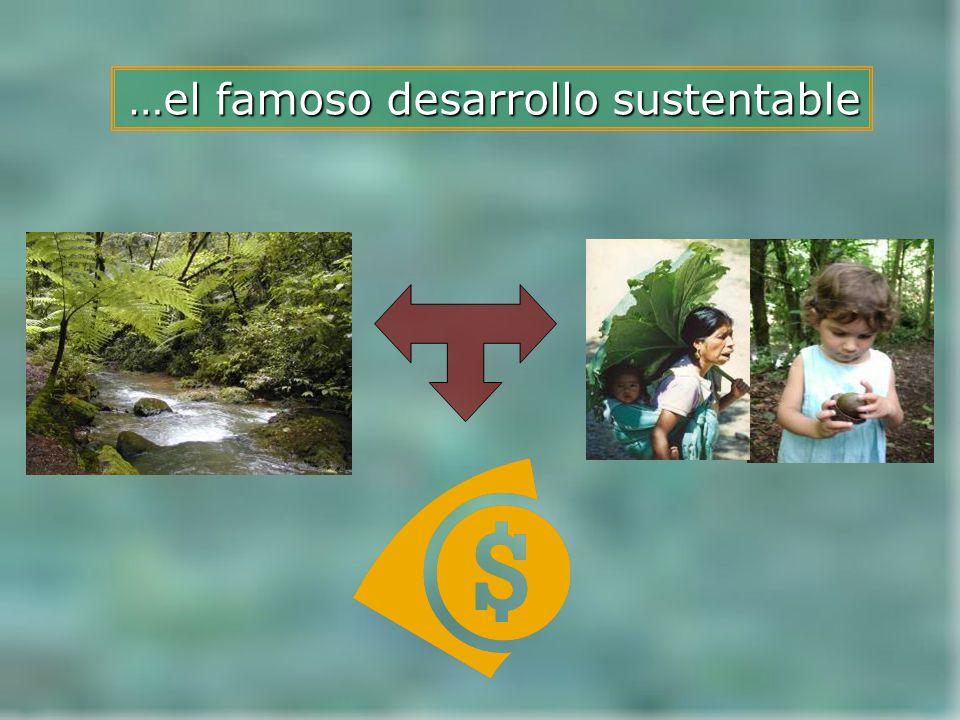 Autor: Cesar Añorve ¿Desarrollo sustentable?