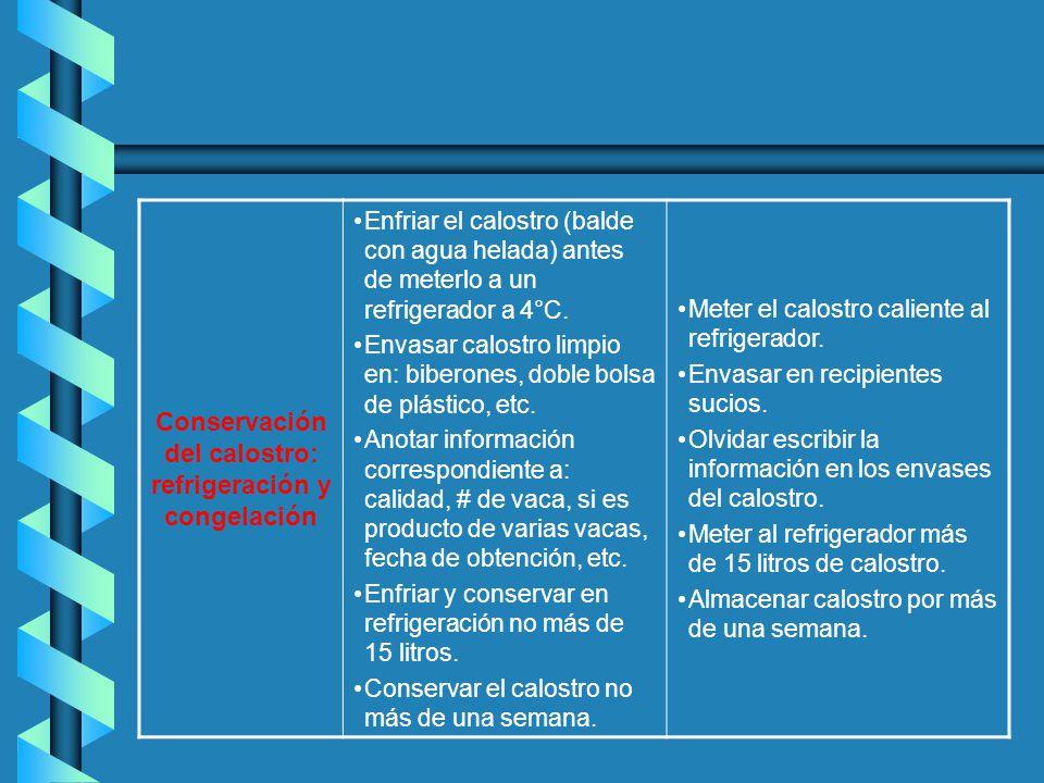 Conservación del calostro: refrigeración y congelación (continuación) Congelar el calostro en envases limpios y sanitizados; es recomendable que sean en medidas de 2 litros, por ejemplo.