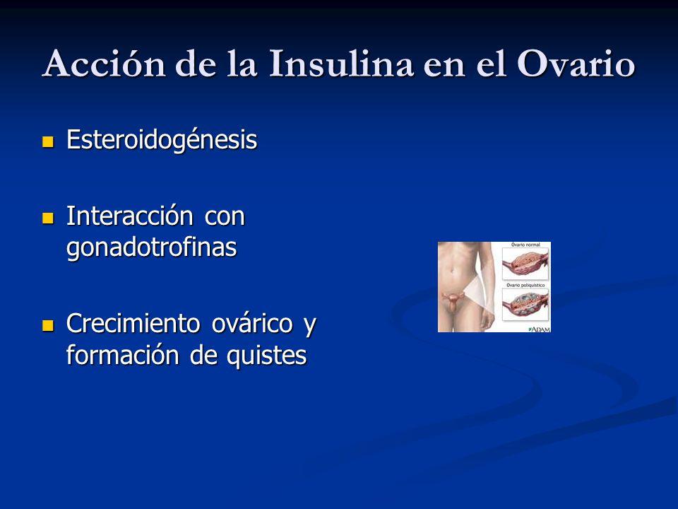 Acción de la Insulina en el Ovario Esteroidogénesis Esteroidogénesis Interacción con gonadotrofinas Interacción con gonadotrofinas Crecimiento ovárico