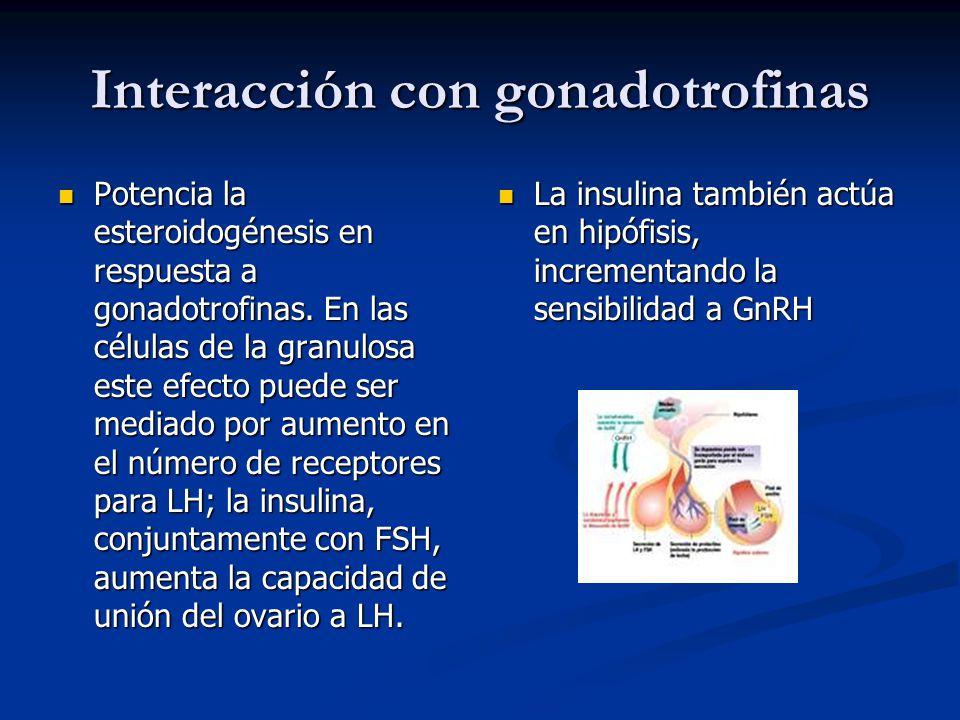 Interacción con gonadotrofinas Potencia la esteroidogénesis en respuesta a gonadotrofinas. En las células de la granulosa este efecto puede ser mediad
