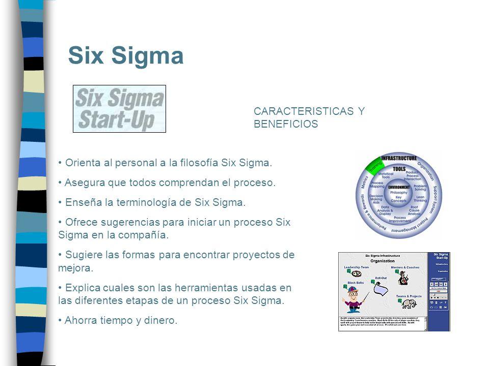 Six Sigma Orienta al personal a la filosofía Six Sigma. Asegura que todos comprendan el proceso. Enseña la terminología de Six Sigma. Ofrece sugerenci