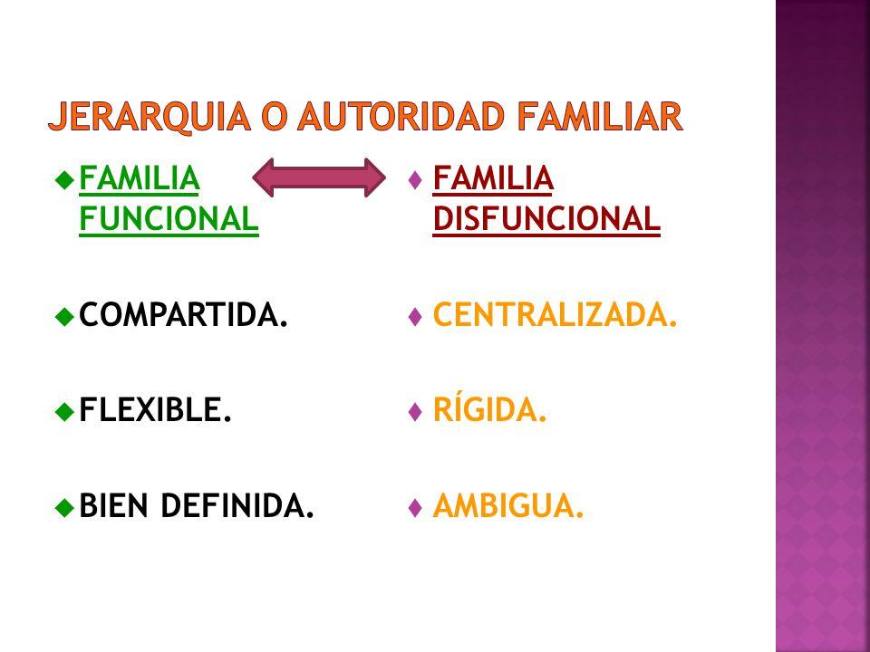 FAMILIA FUNCIONAL COMPARTIDA.FLEXIBLE. BIEN DEFINIDA.