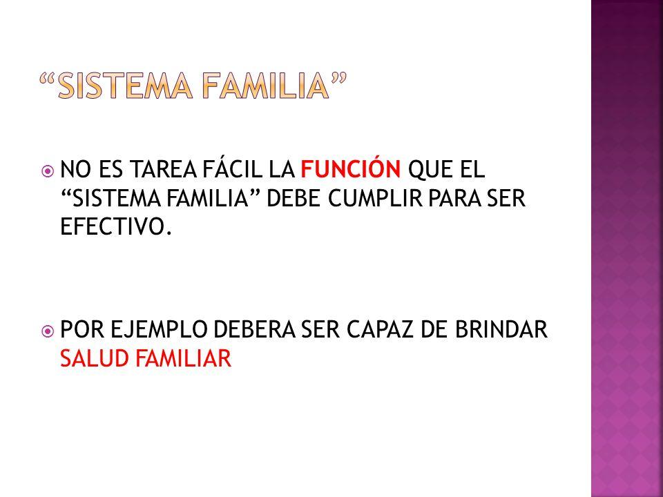 NO ES TAREA FÁCIL LA FUNCIÓN QUE EL SISTEMA FAMILIA DEBE CUMPLIR PARA SER EFECTIVO.