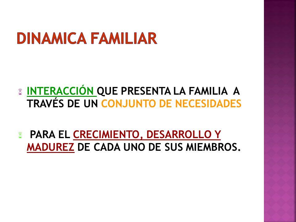 INTERACCIÓN QUE PRESENTA LA FAMILIA A TRAVÉS DE UN CONJUNTO DE NECESIDADES PARA EL CRECIMIENTO, DESARROLLO Y MADUREZ DE CADA UNO DE SUS MIEMBROS.