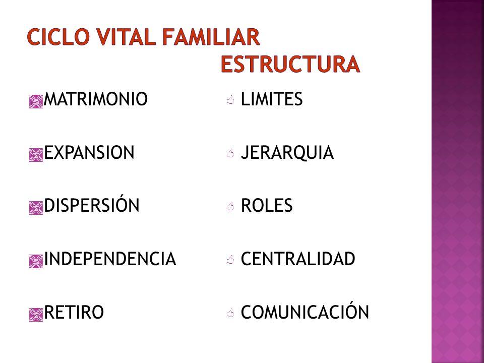 LIMITES CENTRALIDAD REGLAS DE INTERACCIÓN ALREDEDOR DE QUIÉN GIRA LA VIDA EN FAMILIA