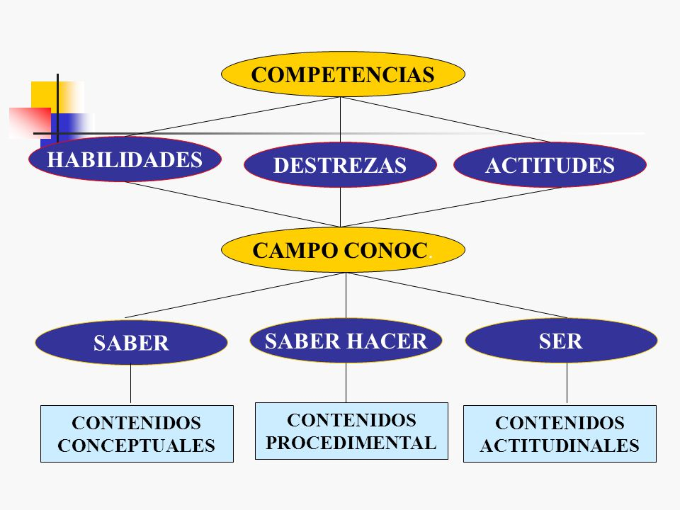 SABER HACER SER C Actuación eficaz Diferentes contextos